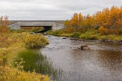 Small river at the Finnmark plateau. Small river at the Finnmarks plateau with autumn colors with a small bridge Royalty Free Stock Photography