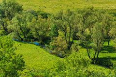 Small river flows on green dale. Landscape view Stock Image
