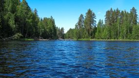 A small river flows into the lake. royalty free stock image