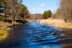 Small river in forest. Small river in the forest with blue water royalty free stock photo