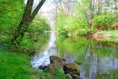 Small river and green banks in spring Royalty Free Stock Images