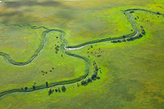 Small river on the green meadow Stock Photos