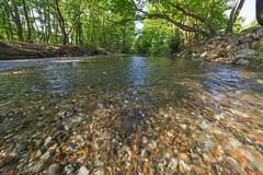 Small river in a green natural environment royalty free stock image