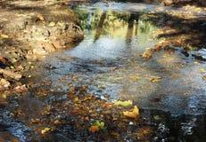 The Park Kolomenskoe. Small river in the Kolomenskoe park in Moscow stock photos