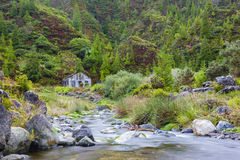 Small river at Lombadas with ruin, Sao Miguel, Azores, Portugal Stock Image