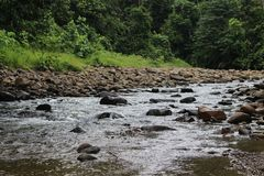 A small river in the middle of the north borneo forest Stock Image