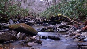 Small River with Moss Covered Stones in the Deep Woods of the Great Smokey Mountains National Park. Small River with Moss Covered Stones in the Deep Woods of Stock Images