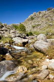 Small river at the mountain Stock Images