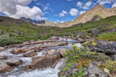 A small river in the mountain tundra Stock Photography