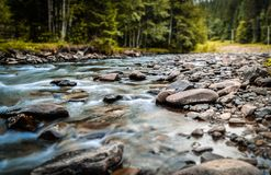The small river Royalty Free Stock Photo