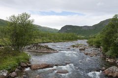 Small River in the Mountains Stock Images
