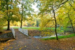 Small river in the park. Autumn mood stock photography