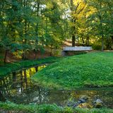 Small river in the park. In the summertime stock photo