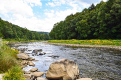 A small river in Pennsylvania. A small river in Pennsylvania flowing through a heavily forested valley Royalty Free Stock Photography