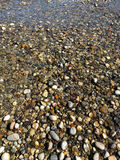 Small River Rocks Royalty Free Stock Images