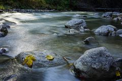 Flowing. Small river with rocks flowing Stock Images