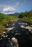 Small river with rocks somewhere in Kamchatka. Russia royalty free stock photo