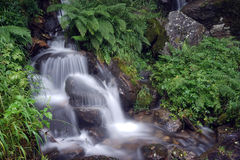 Small river Royalty Free Stock Photo