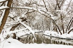 Small river in a snow-covered forest stock photo