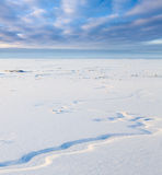 Small river in snowy plain, top view Stock Images