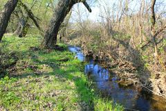 Small river on spring Royalty Free Stock Photos