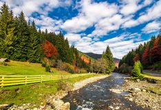 Small river in spruce forested mountains. With some trees in red foliage. camping place behind the fence on a grassy meadow. gorgeous landscape under vivid Royalty Free Stock Image