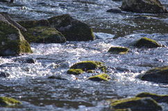 Small river with stones Royalty Free Stock Images
