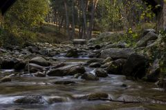 A small river with the stones in the mystery colored autumn forest. Near Madrid, Spain. Valsain`s forest `La boca del asno` the fonderful plays to spend your Royalty Free Stock Images