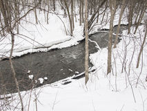 Small river with trees in winter Stock Images