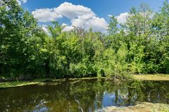 Small river in the walley. On a summer sunny day Stock Image