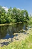 Small river in the walley. On a summer sunny day Stock Photography