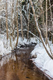 Small river in the winter Royalty Free Stock Photos