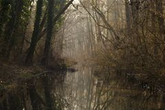 Small river in Winter Stock Images