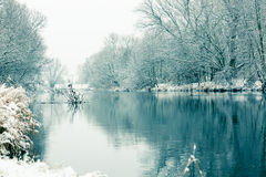 Small river in winter Royalty Free Stock Image