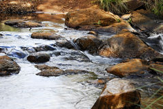Small rivers Stock Photography