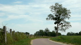 Small road at the countryside stock footage
