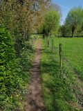 Small road. In nature royalty free stock image