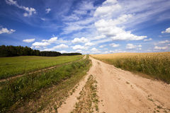 The small road Stock Photography