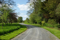 Small road in park Stock Photos
