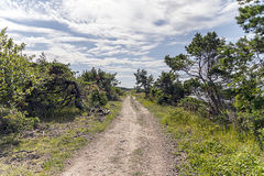 Small road. In the swedish landscape royalty free stock images
