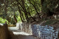 Small road in the woods. Umbria Italy: small road in the woods leading to the Franciscan places Royalty Free Stock Photos