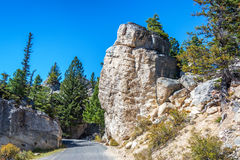 Small Road in Yellowstone National Park Stock Images