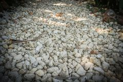 Small rock stone gravel on the road with closeup take and vignette around - photo indonesia vector illustration