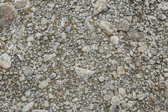 Small rock from wet ground texture. High detail small rock from wet ground texture for background stock images