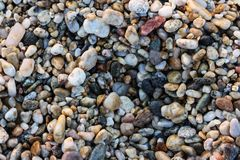 Small Rocks on a Rocky Beach.  Stock Image