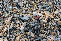 Small Rocks on a Rocky Beach.  Stock Photo