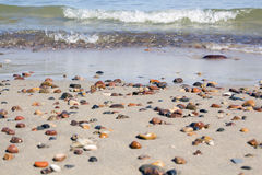 Small rocks scattered on beach sand close up. Stock Photography