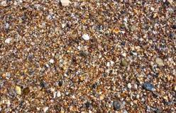 Small rocky cover the sea coast Stock Photos