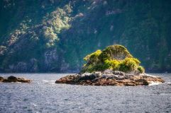 A small rocky island at Doubtful Sound, New Zealand. A small rocky island with briliant vegetation at Doubtful Sound close to the opening to the Tasman Sea. The Stock Photo