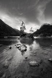Small rocky island with tree on lake Hintersee nea Royalty Free Stock Photography